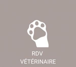 rdv vétérinaire
